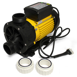 LX Whirlpool TDA 100 .7kw(1Hp) Spa Pump